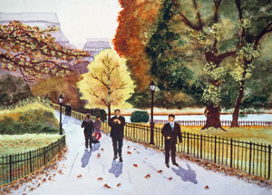 Landscape St. James's Park, London